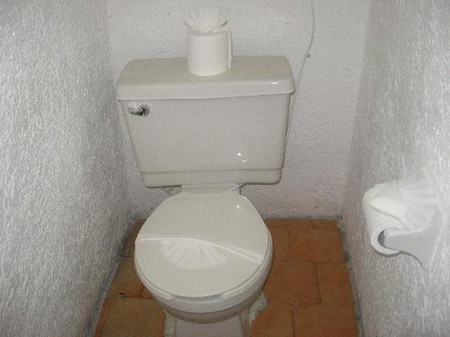 Toilet Why a Toilet Is Called a John