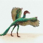 Why Did the Archaeopteryx Become Extinct